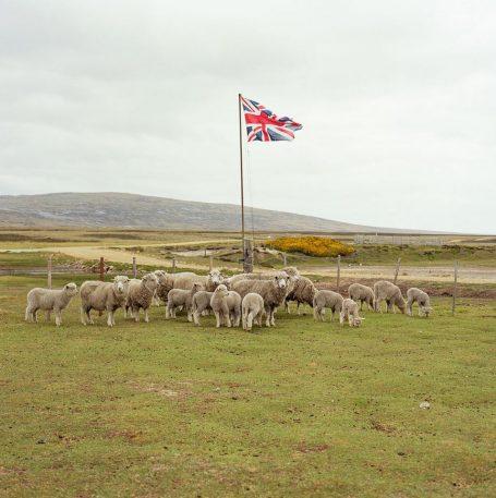 Long Island Farm, Falkland Islands. Image © Jon Tonks, from the series 'Empire'