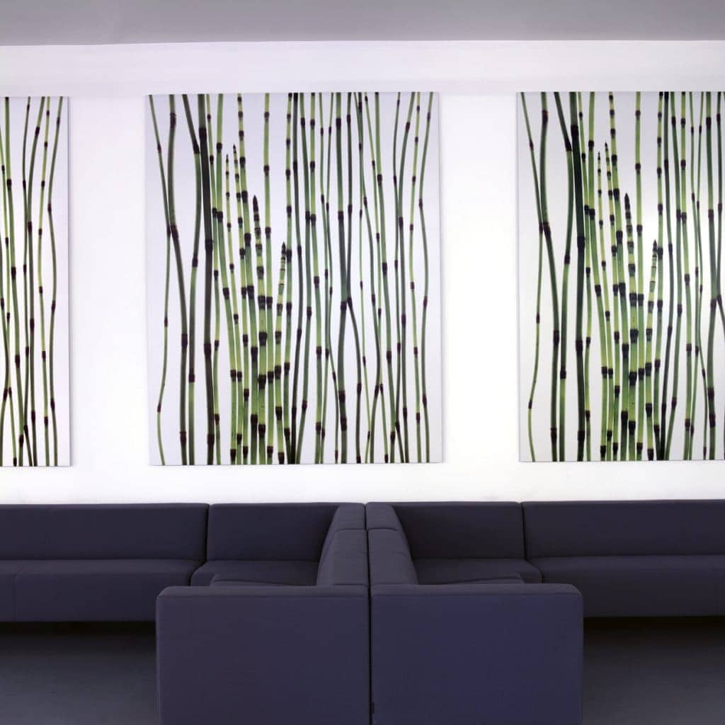 Horsetail Equisetum (installation) © Fleur Olby