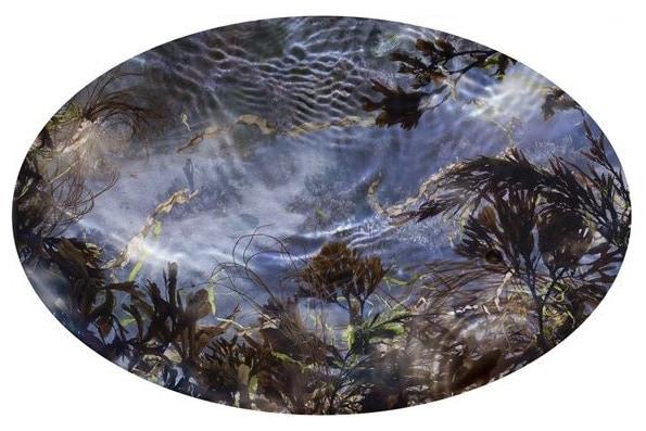 Tide Pool 39, unique C-type print © Susan Derges