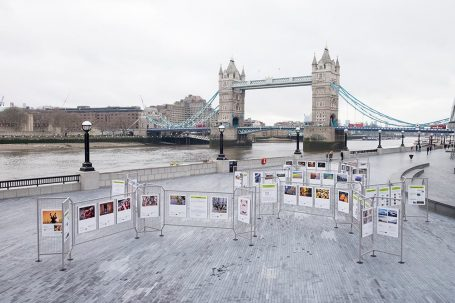 TPOTY Exhibition at London Bridge City