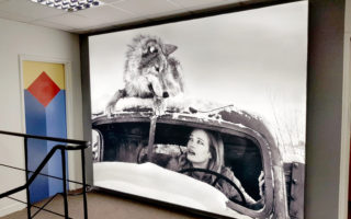 Fabric Lightbox produced by Genesis Imaging with David Yarrow Artwork